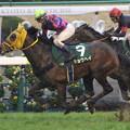 キョウヘイ レース_3(17/01/08・ 第51回 日刊スポーツ賞シンザン記念)