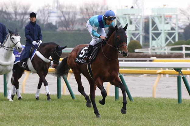 グレーターロンドン 返し馬(17/01/29・節分ステークス)