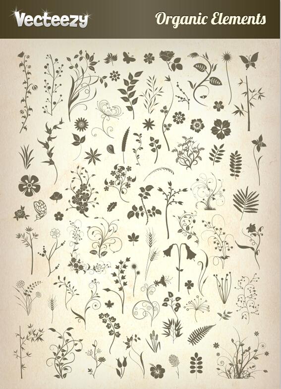 80朵鲜花娇艳欲滴矢量花纹素材+7套时尚质感纹理素材