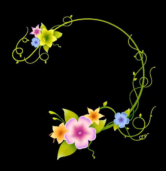 清新的花朵绽放视频素材带通道