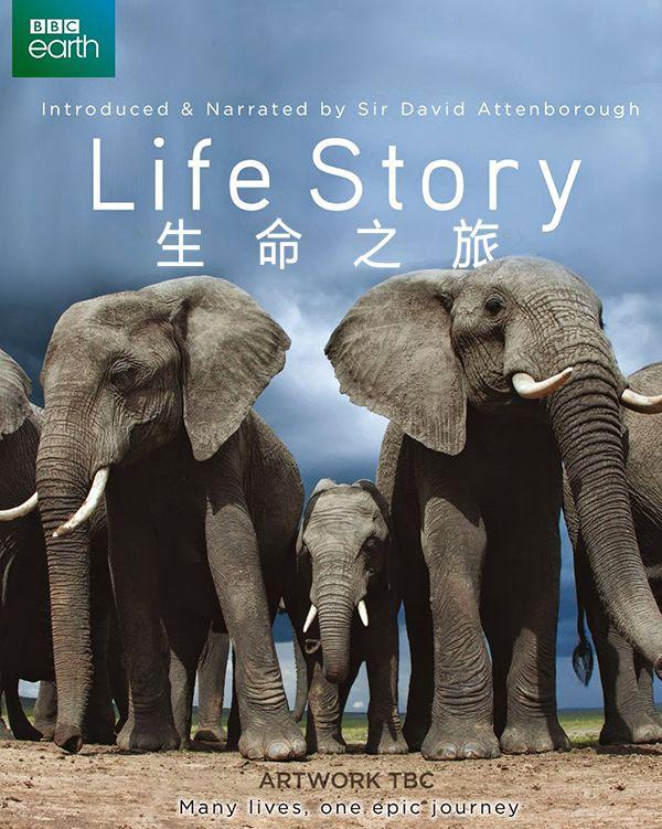 BBC纪录片:生命之旅