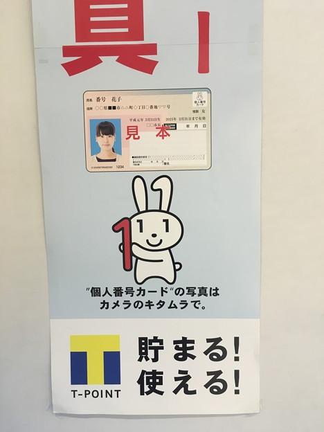 """マイナちゃん """"個人番号カード""""の写真はカメラのキタムラで。"""