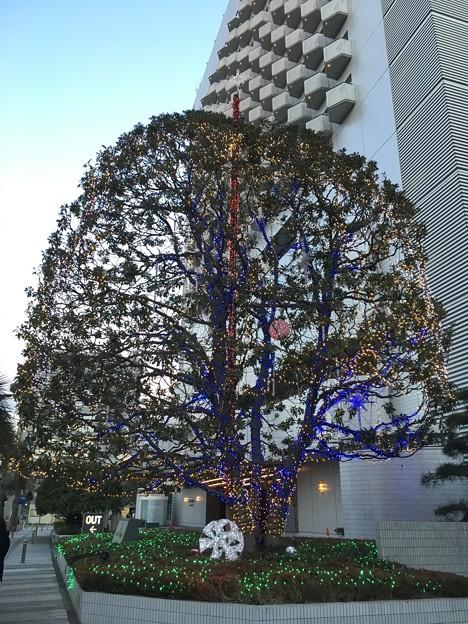 Photos: ホテルスプリングス幕張