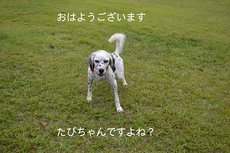 DSC_0549_1