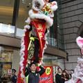 Photos: 獅子舞