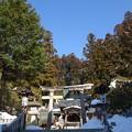 Photos: 桜山八幡宮