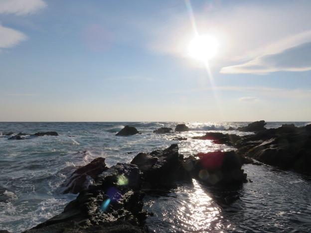 Photos: 城ヶ島 海その688 IMG_1127