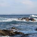 Photos: 城ヶ島 海その692 IMG_1170