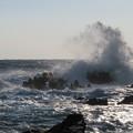 Photos: 城ヶ島 海その710 IMG_1130