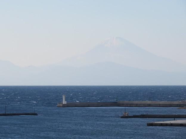 城ヶ島 海その734 IMG_1057