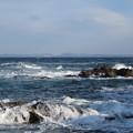 Photos: 城ヶ島 海その744 IMG_1168