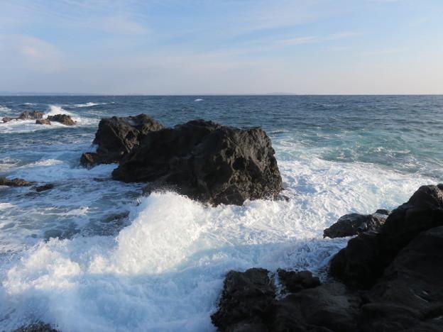 城ヶ島 海その745 IMG_1203