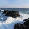 Photos: 城ヶ島 海その745 IMG_1203