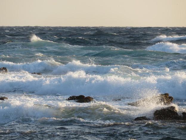 城ヶ島 海その757 IMG_1293