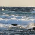 Photos: 城ヶ島 海その757 IMG_1293