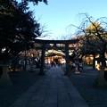 Photos: 日枝神社 境内