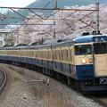 中央本線115系1000番台 C1編成(スカ色)