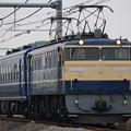 EF65 501+スハフ12 162 配給回送