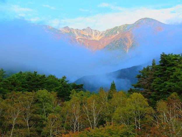 白樺林と宝剣岳