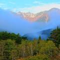 Photos: 白樺林と宝剣岳