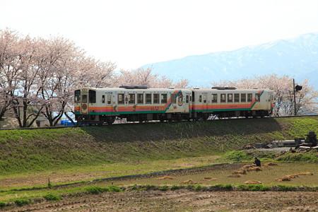荒砥駅付近フラワー長井線と桜