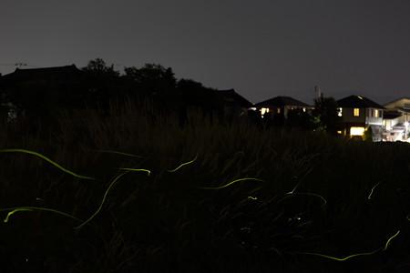 鳥居ヶ丘3