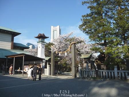 150328-伊勢山皇大神宮 (12)