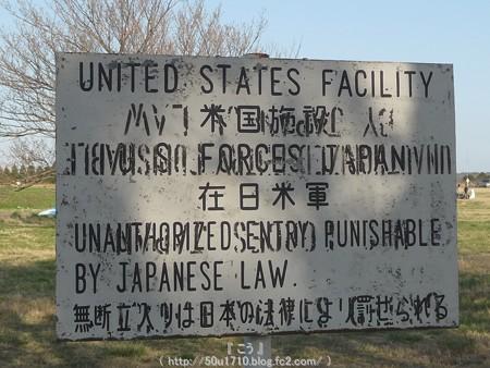 150331-桜 海軍道路 (49)