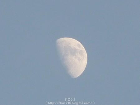 150527-お月さん (6)