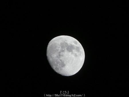 160518-お月さん (3)