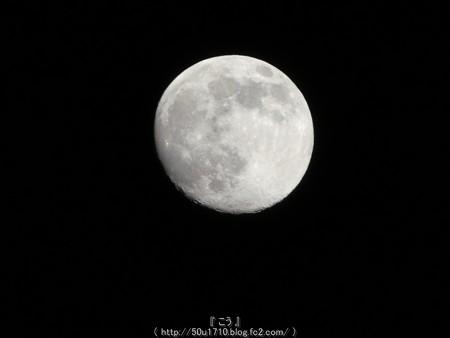 160618-お月さん (1)