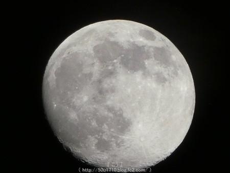 160618-お月さん (5)
