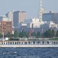 Photos: 160707-臨港パーク (7)