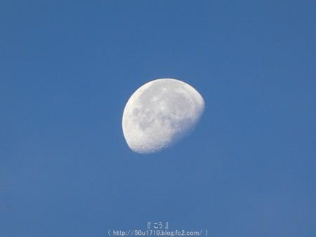 160823-お月さん(朝) (1)