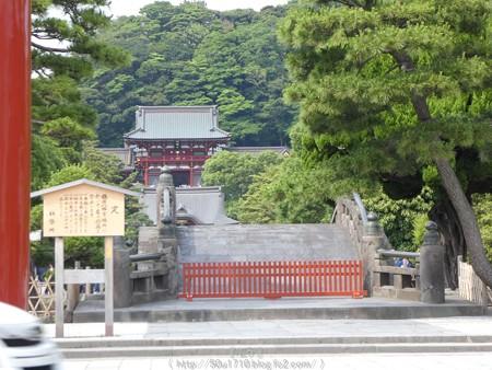 160606-鶴岡八幡宮 (2)