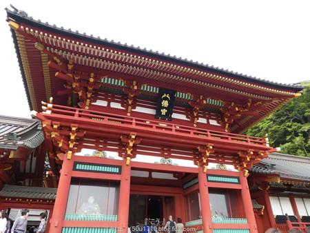 160606-鶴岡八幡宮 (24)