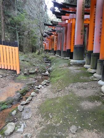 161229-伏見稲荷 (177)