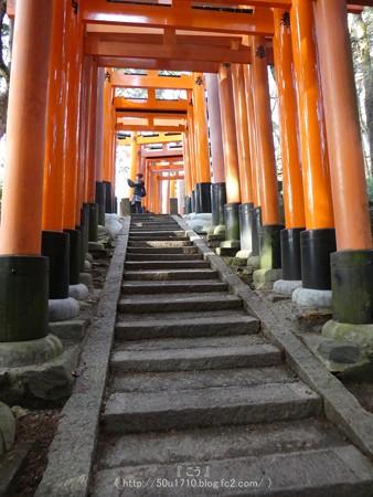 161229-伏見稲荷 (156)