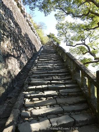 170110-久能山東照宮 (48)