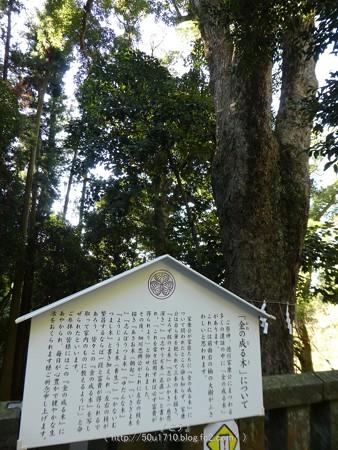 170110-久能山東照宮 (160)