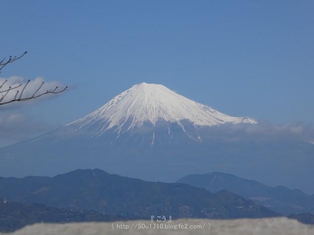 Photos: 170110-日本平ホテル (84)