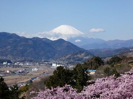 170208-富士山 (7)