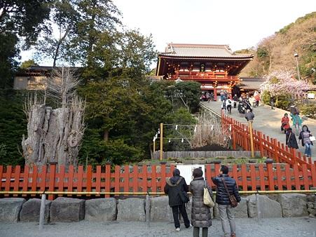 110308-鶴岡八幡宮 (5)