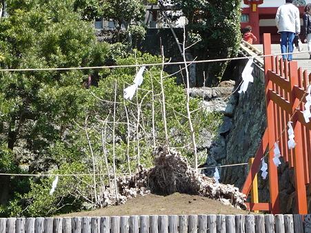 110406-八幡さま (28)