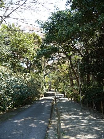 110406-妙本寺 (3)