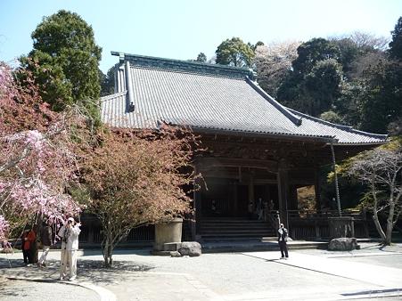 110406-妙本寺 (15)