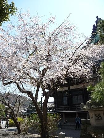 110406-本覚寺 (10)