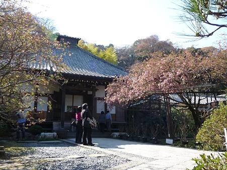 110406-光則寺 (26)