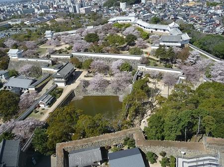 110417-姫路城 (58)