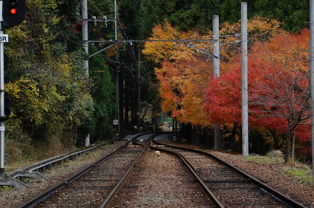 二ノ瀬駅の紅葉_3